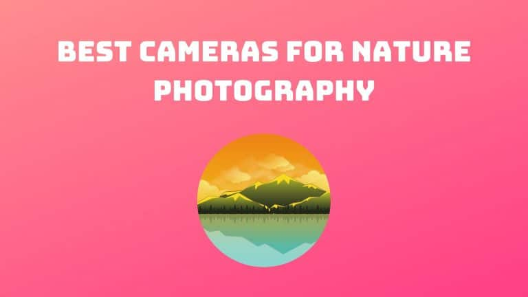 Best Cameras for Nature Photography (1)