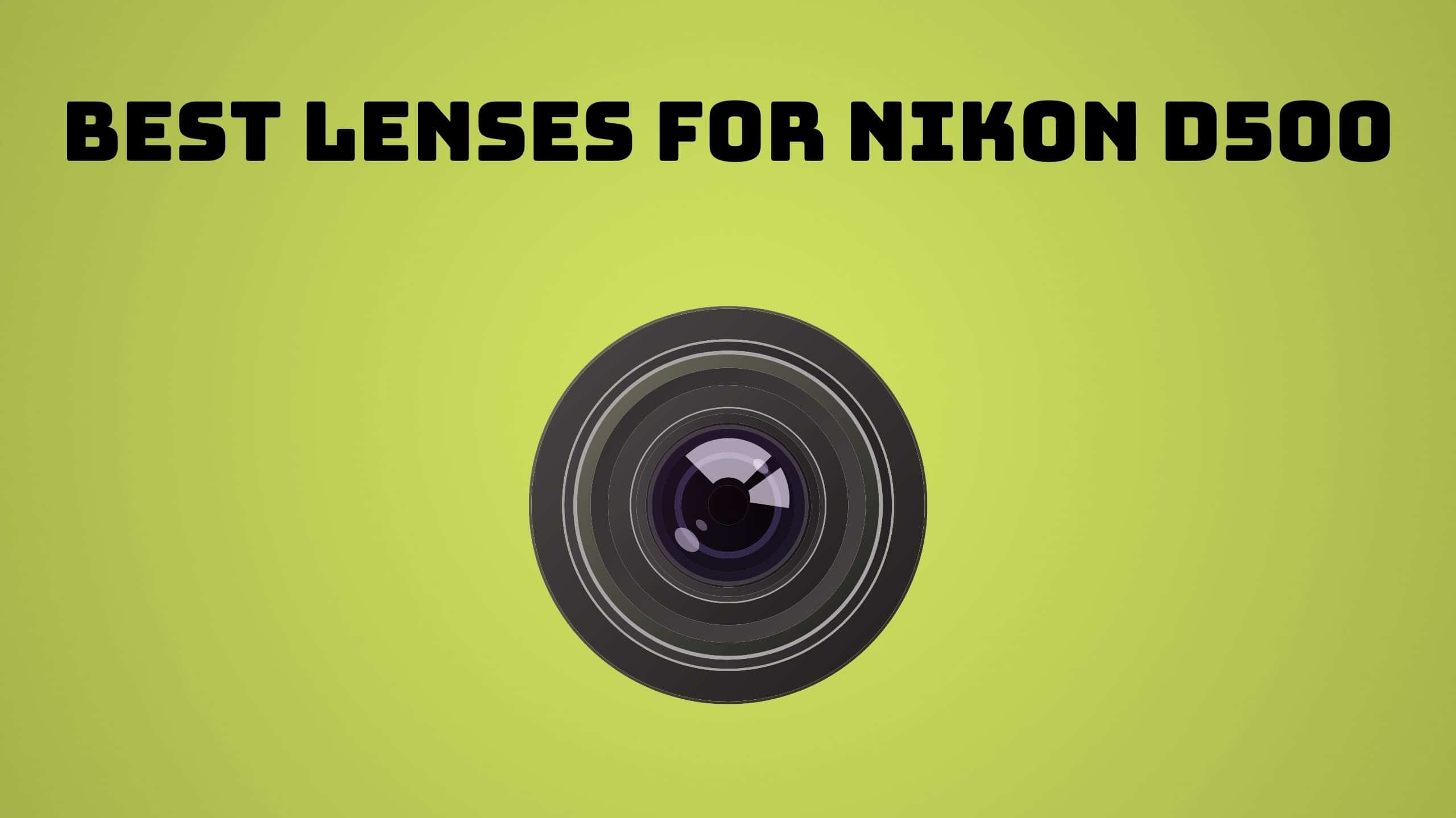 Best Lenses for Nikon D500