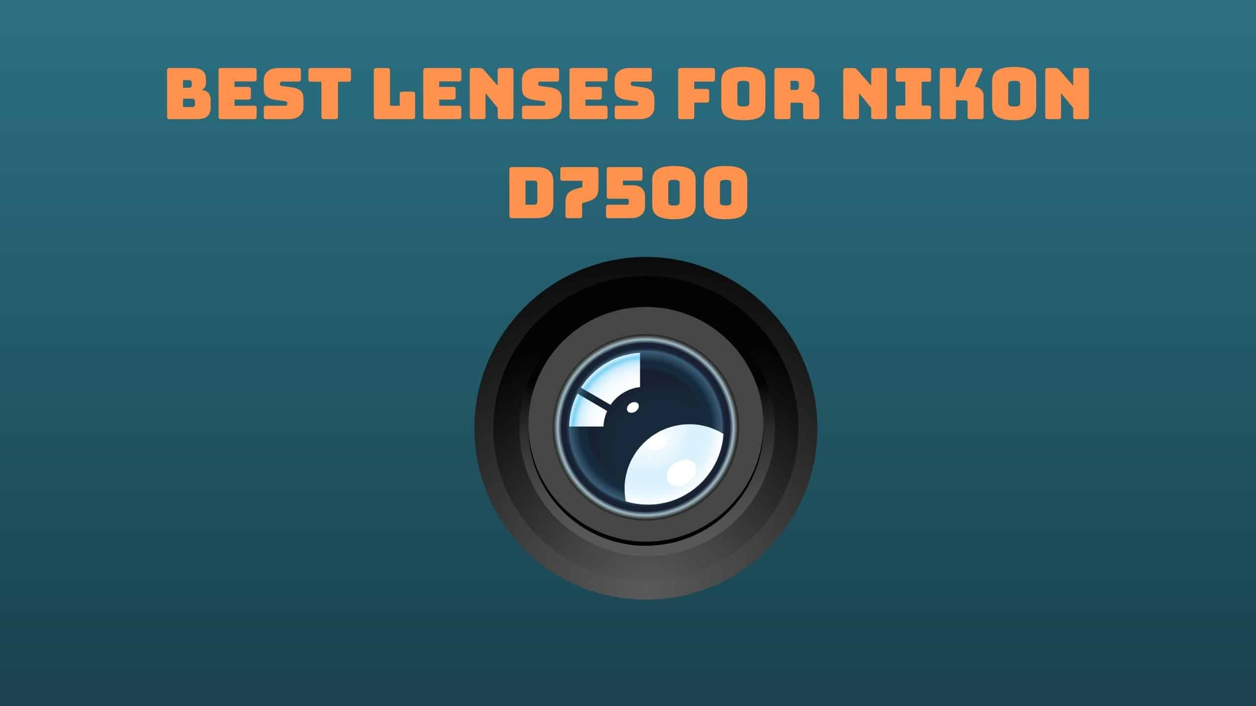 Best Lenses for Nikon D7500